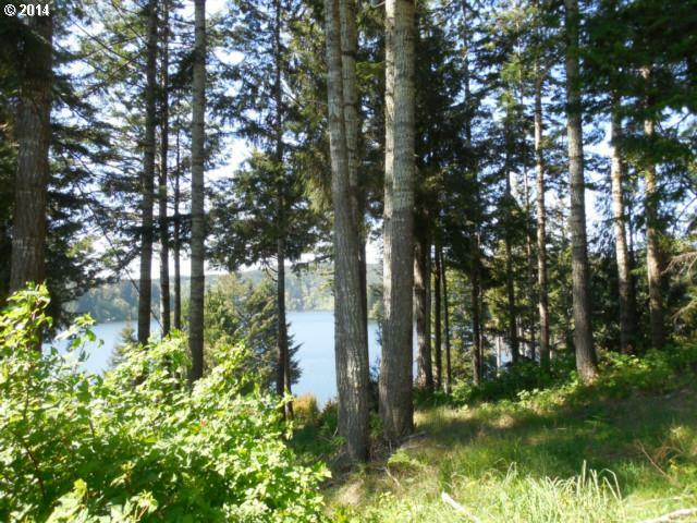 Lindross Arm, Lakeside, OR - USA (photo 2)