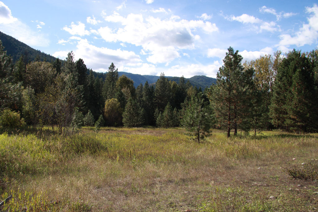 0 Methow Ranch Rd, Winthrop, WA - USA (photo 4)