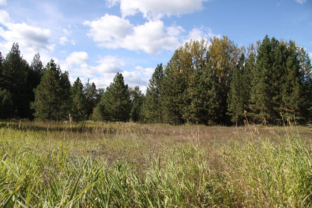 0 Methow Ranch Rd, Winthrop, WA - USA (photo 2)