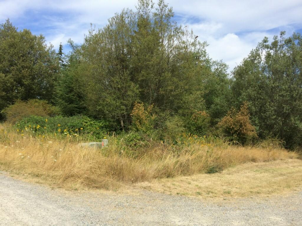 0 Deer Brush Rd, Greenbank, WA - USA (photo 2)