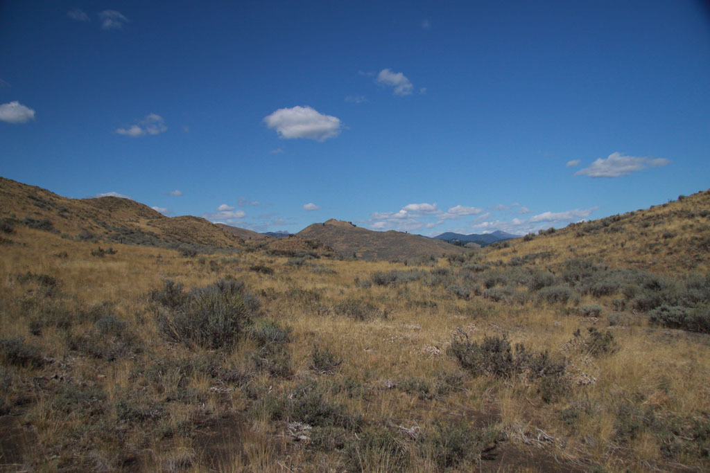 54 Mule Deer Trail, Winthrop, WA - USA (photo 2)