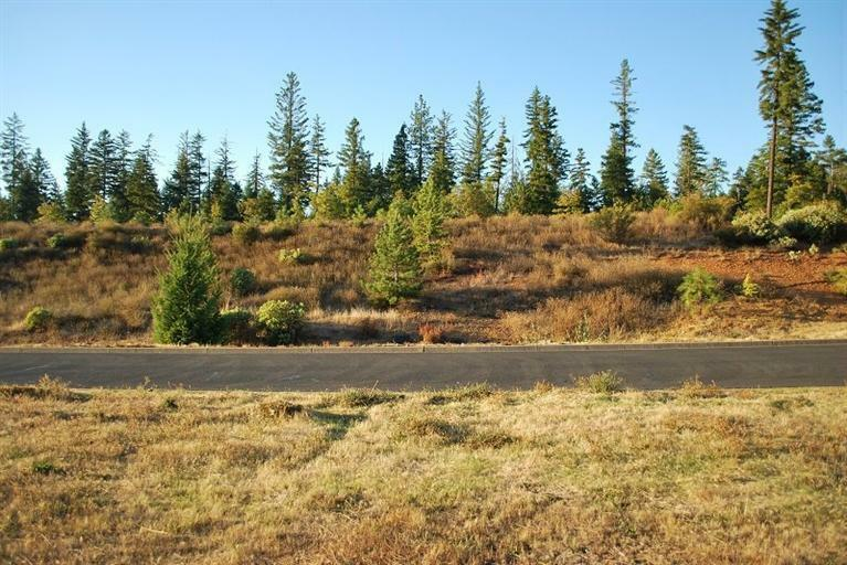 237 Red Cedar Lane, Cave Junction, OR - USA (photo 3)