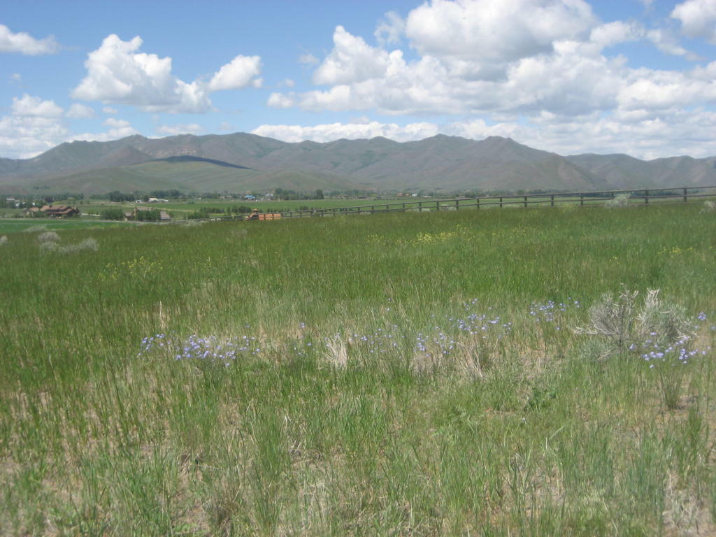 110 Sterling Dr, Bellevue, ID - USA (photo 4)
