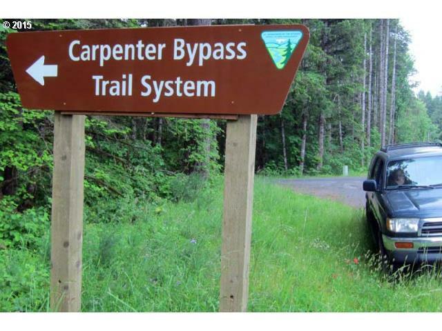 0 Carpenter Bypass, Lorane, OR - USA (photo 2)