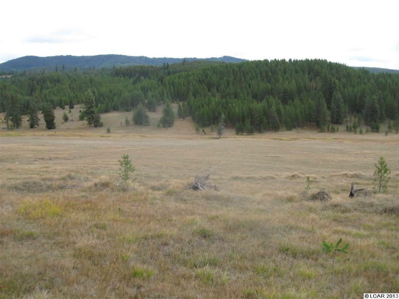 Tbd Elk Creek Rd., Elk City, ID - USA (photo 1)