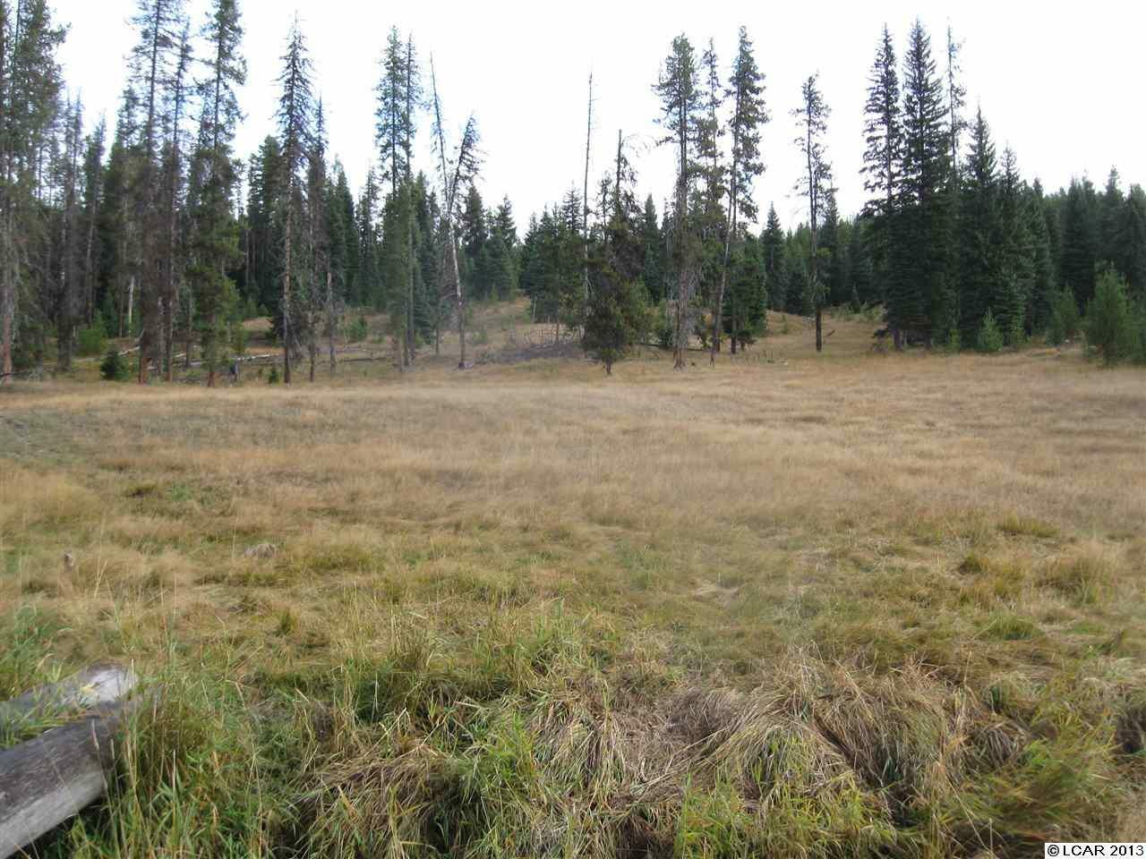 Tbd Elk Creek Rd., Elk City, ID - USA (photo 5)