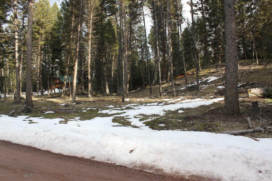 175 Moose Lane, Seeley Lake, MT - USA (photo 4)