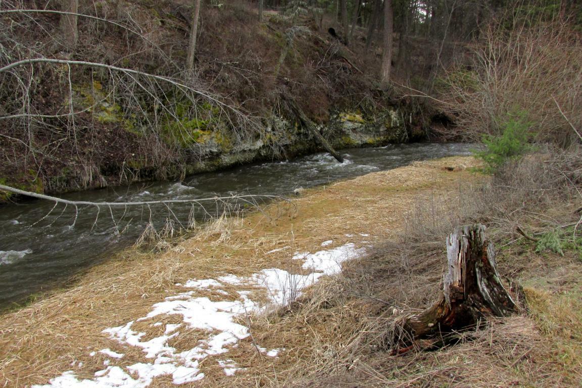 289 Toroda Creek Rd, Curlew, WA - USA (photo 2)