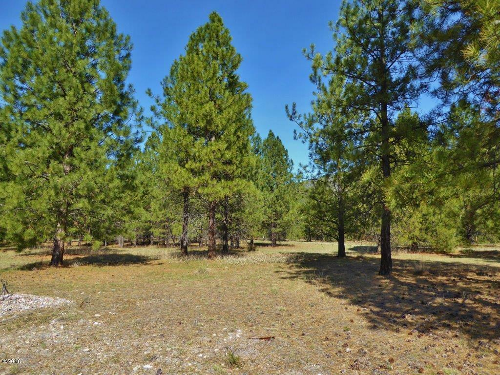 Lot 53 Turah Meadows, Clinton, MT - USA (photo 1)