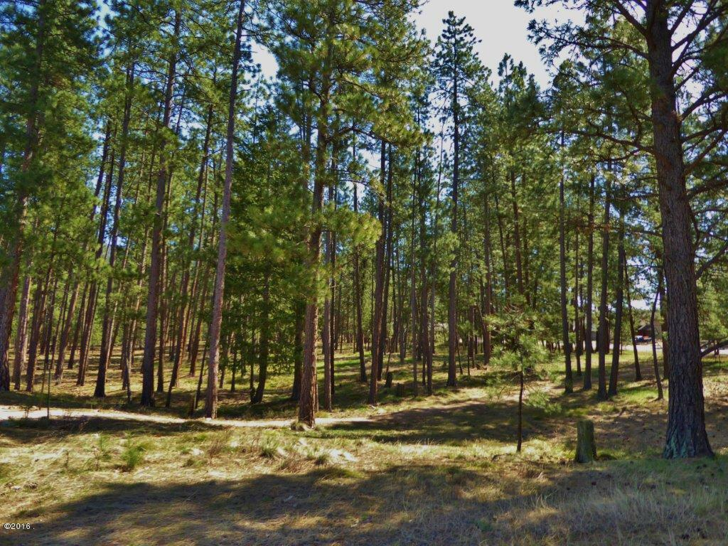 Lot 34 Turah Meadows, Clinton, MT - USA (photo 3)
