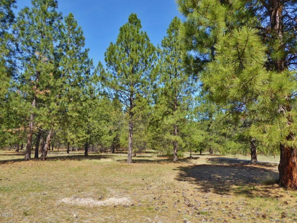 Lot 49 Turah Meadows, Clinton, MT - USA (photo 5)