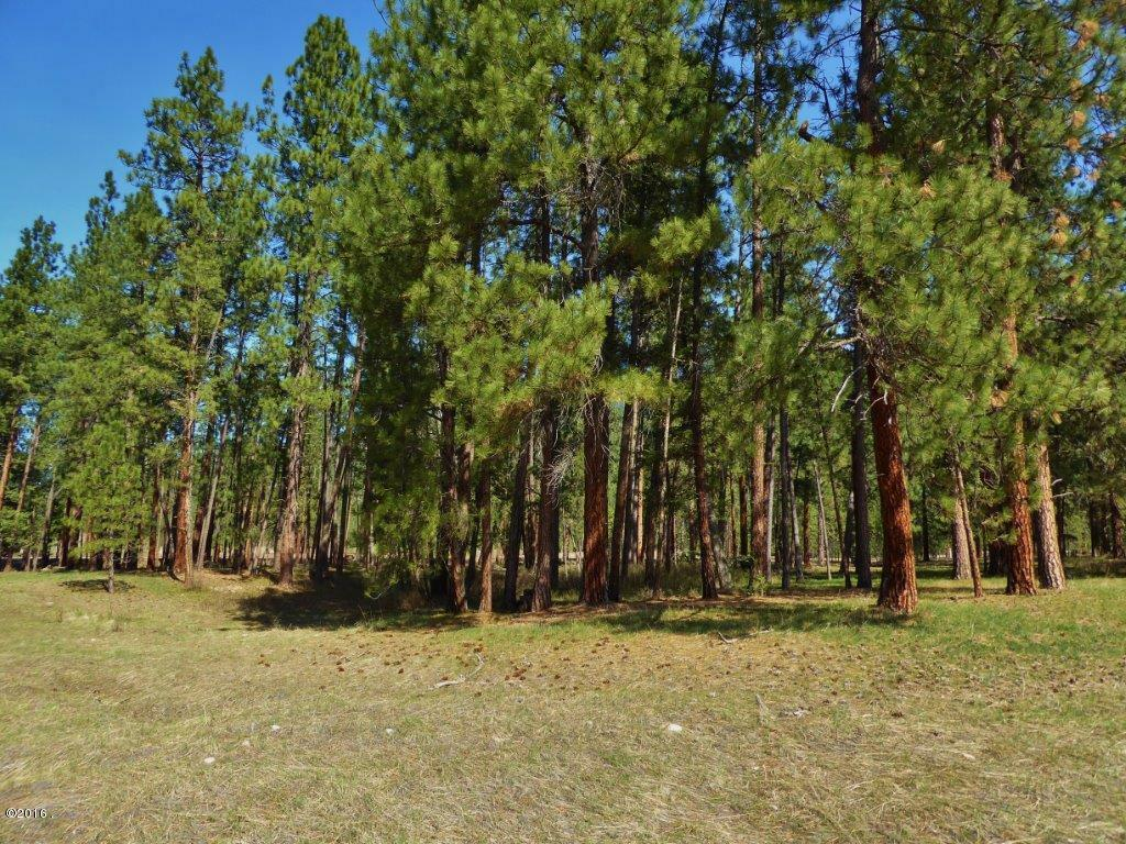 Lot 57 Turah Meadows, Clinton, MT - USA (photo 1)
