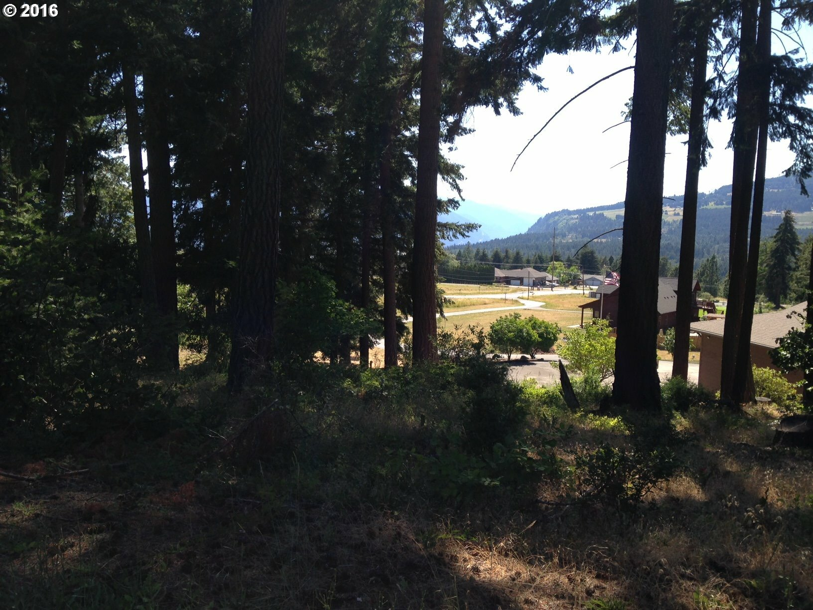 1310 Stag Ln, White Salmon, WA - USA (photo 1)