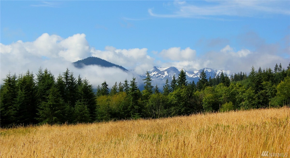 3893 Mt. Pleasant Rd, Port Angeles, WA - USA (photo 4)