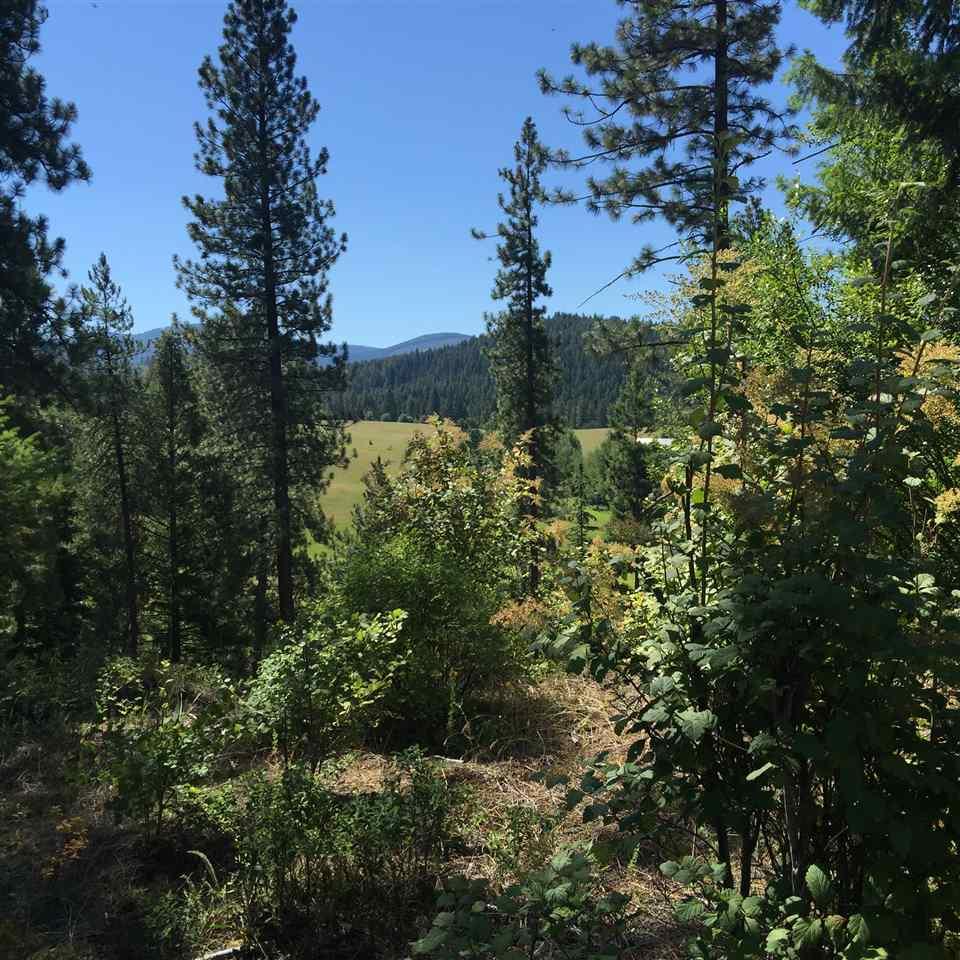 X Jackson Rd, Elk, WA - USA (photo 2)