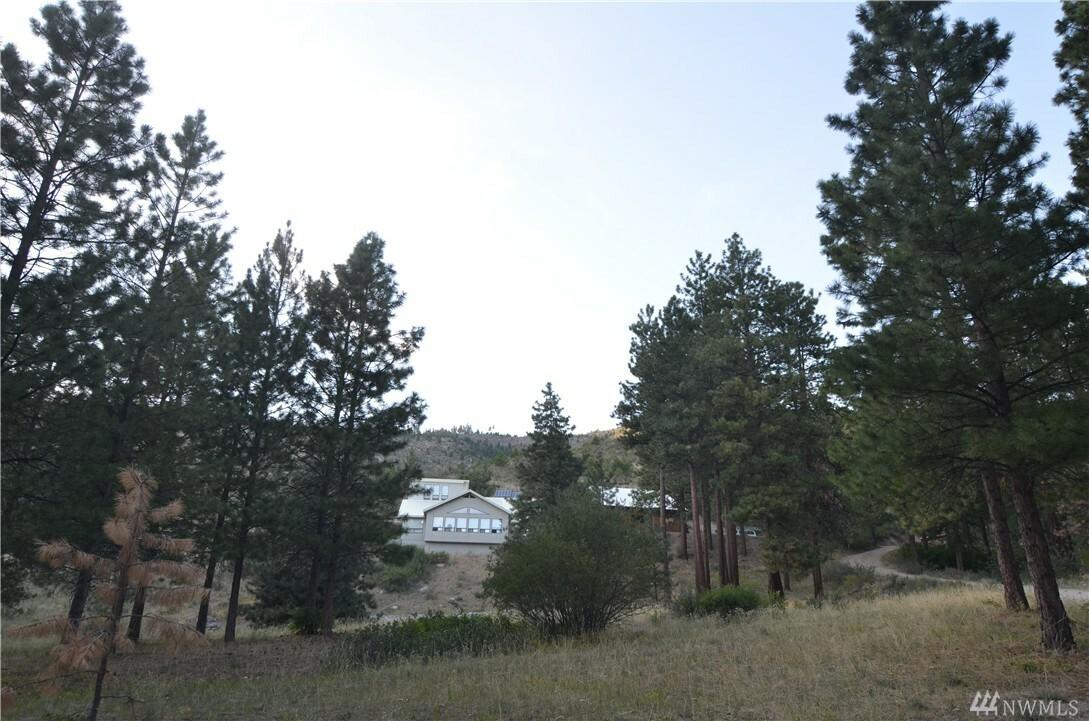 123 Echo Valley Rd, Manson, WA - USA (photo 1)