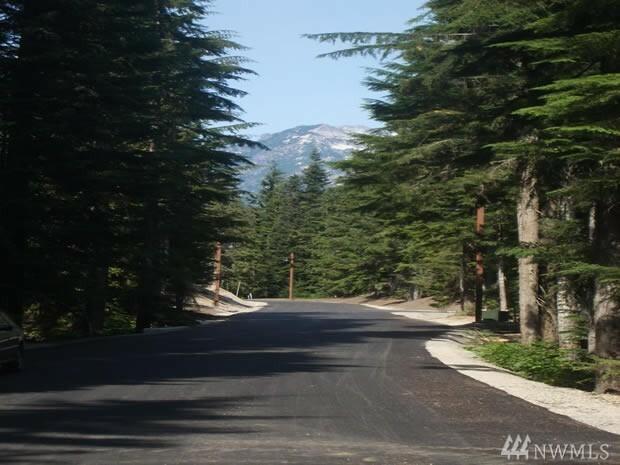 39 Tanner Wy, Snoqualmie Pass, WA - USA (photo 1)