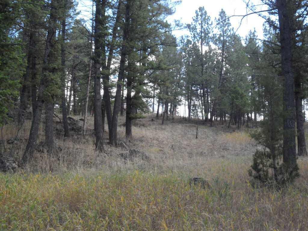 58 Hanging Tree Gulch, Clancy, MT - USA (photo 3)