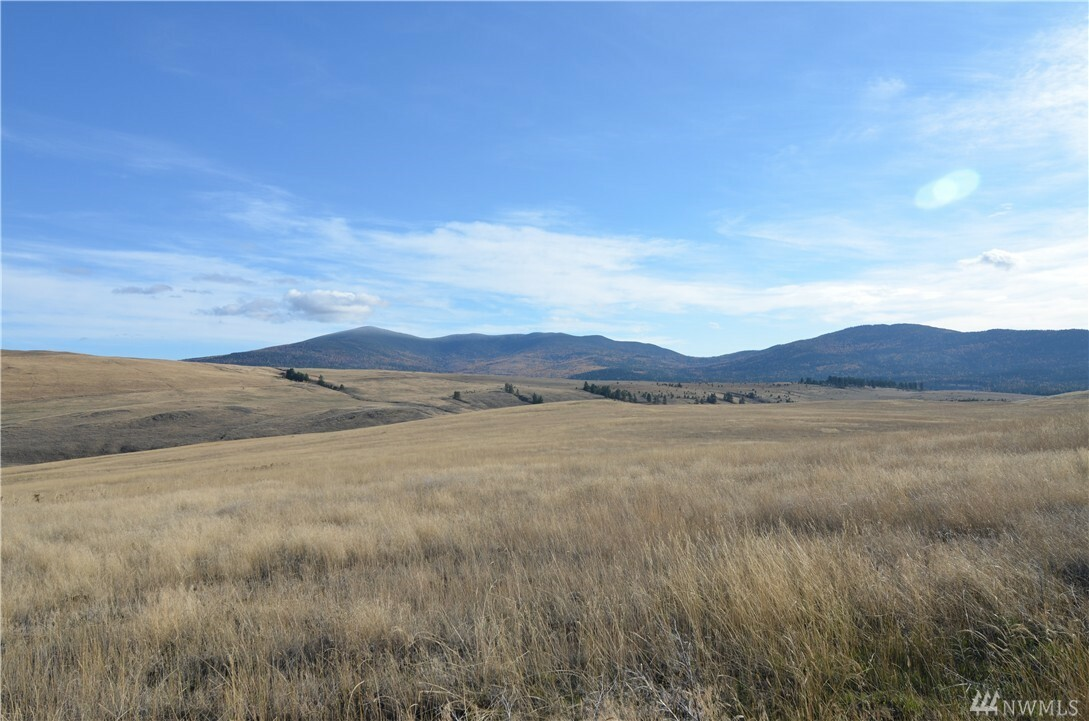 0 Summit Ridge Rd, Tonasket, WA - USA (photo 3)
