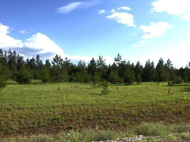 Nna E Scout Trail, Athol, ID - USA (photo 2)