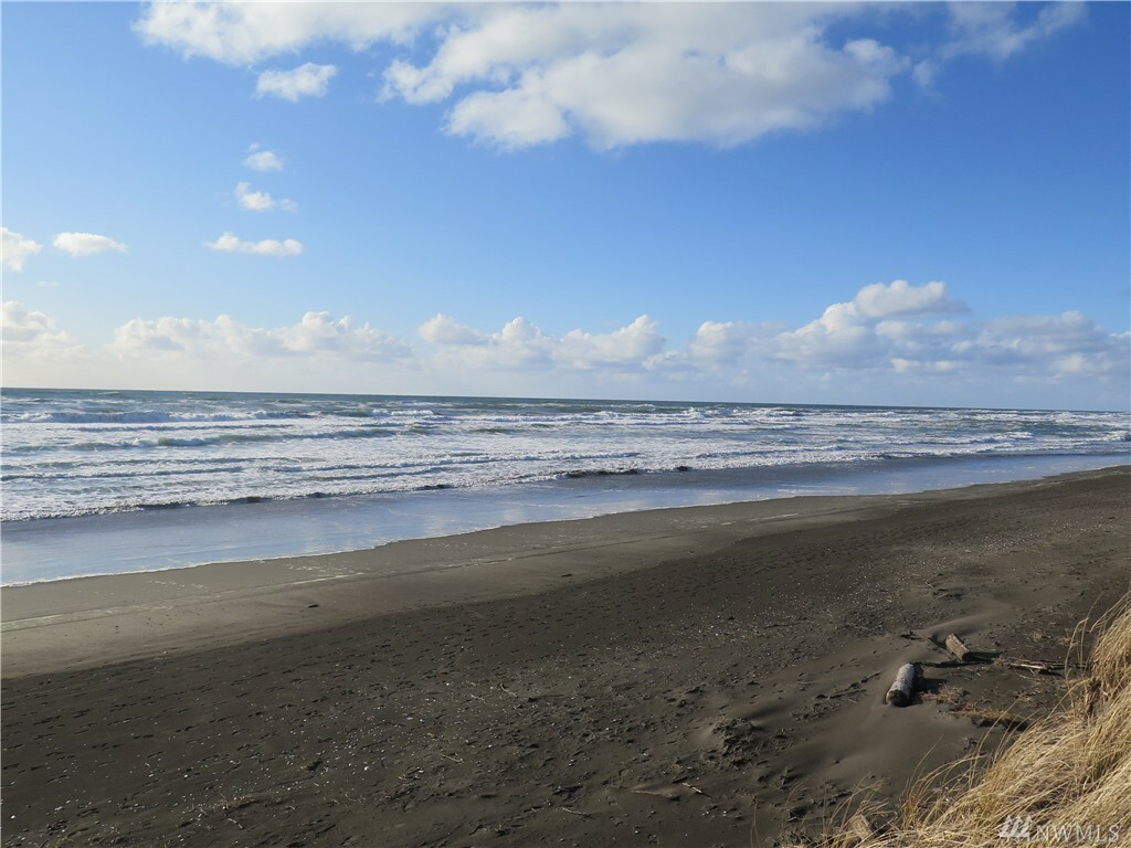 1225 Ocean Shores Blvd Sw, Ocean Shores, WA - USA (photo 2)