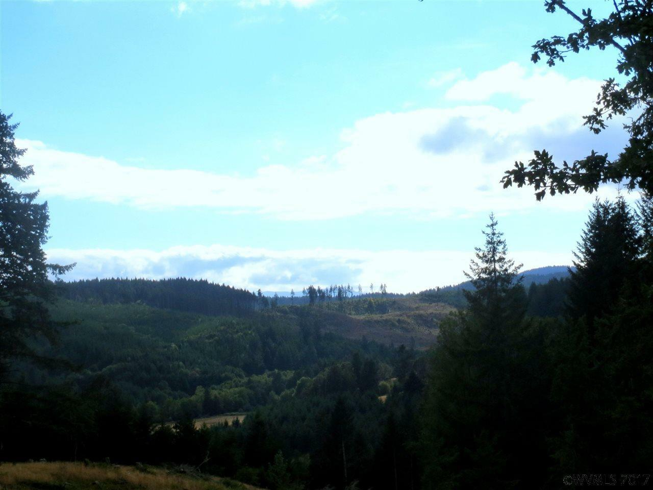18700 Sw Indian Creek Rd, Willamina, OR - USA (photo 2)