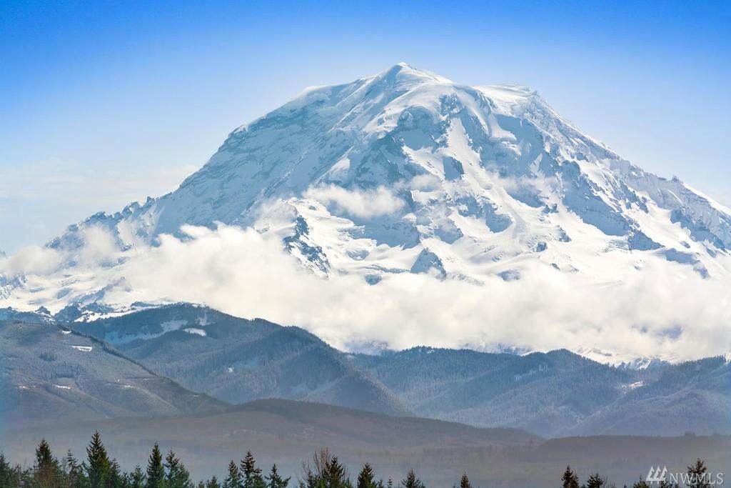 53 Mount Rainier Lp E, Bonney Lake, WA - USA (photo 4)