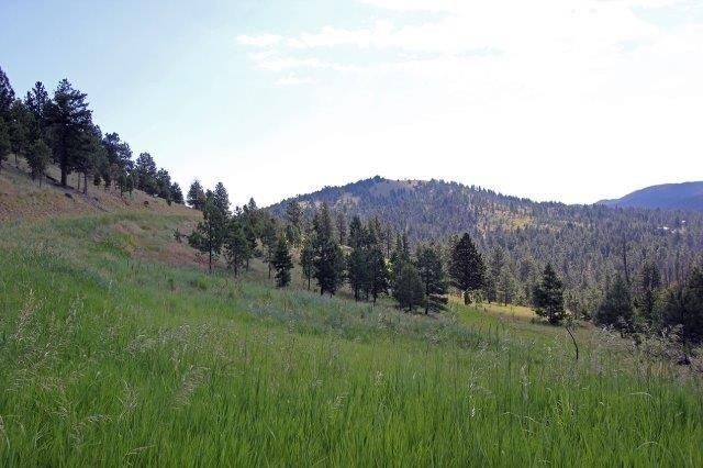 Ms2626 Grizzly Gulch Drive, Helena, MT - USA (photo 1)