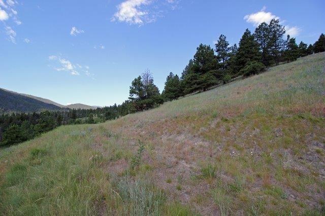 Ms2626 Grizzly Gulch Drive, Helena, MT - USA (photo 5)
