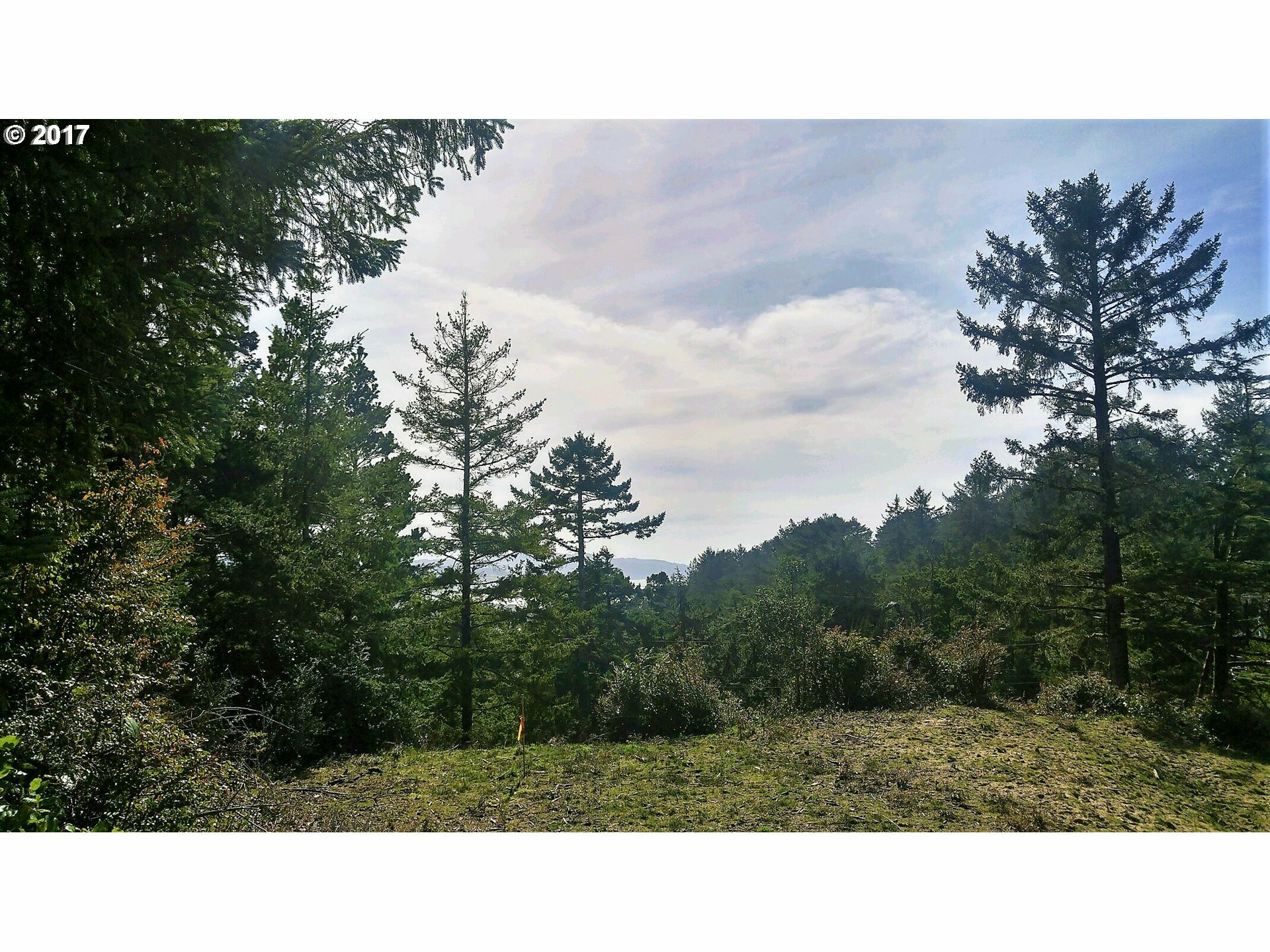 32480 Pine Road, Pacific City, OR - USA (photo 3)