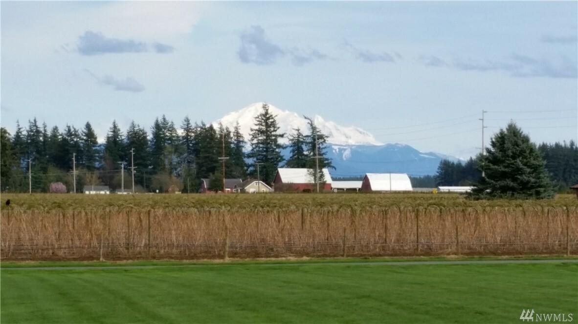 2238 Birch Bay Lynden Rd, Custer, WA - USA (photo 2)
