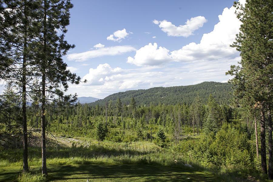 Nka Bull Run, Spirit Lake, ID - USA (photo 1)