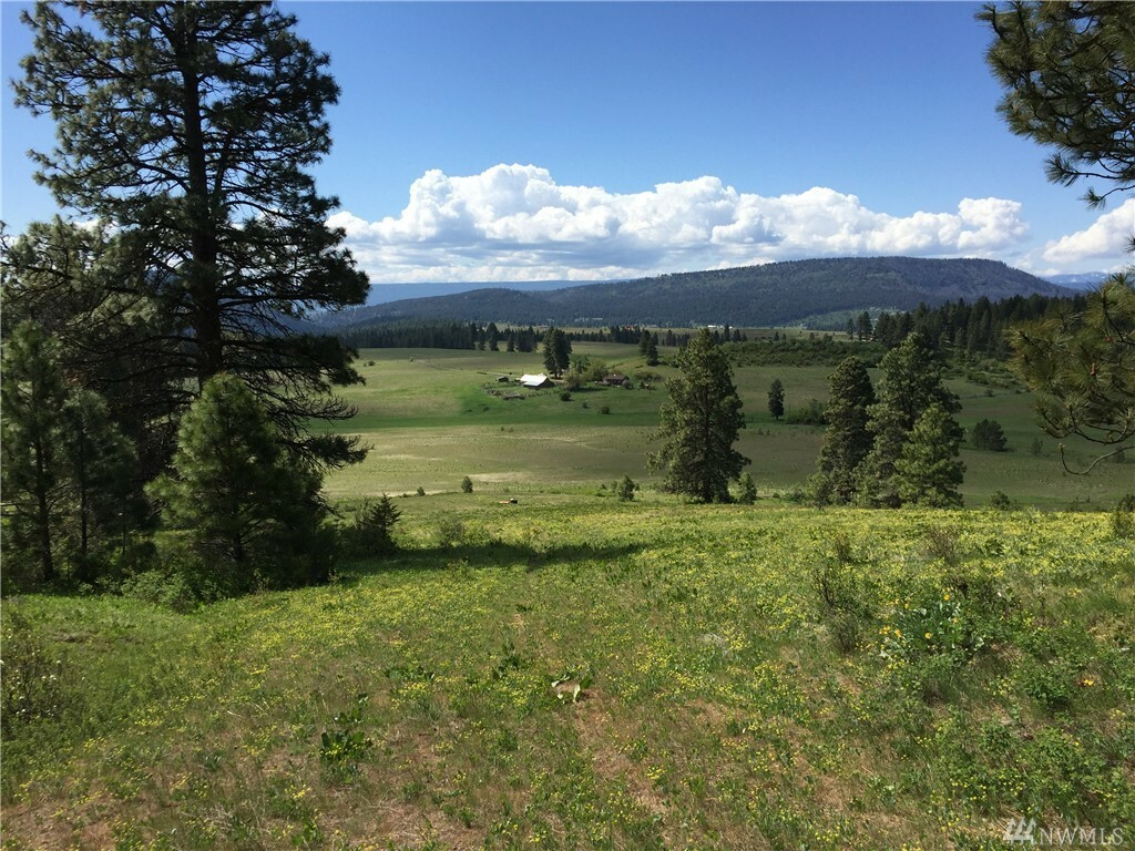 581 Micheletto Rd, Cle Elum, WA - USA (photo 1)