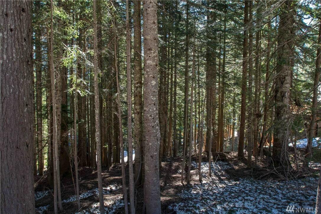 1 Innsbruck Dr Lot79, Snoqualmie Pass, WA - USA (photo 5)