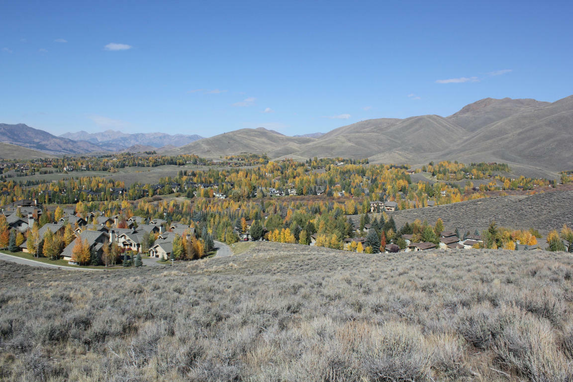 Crown Ranch Final Phase Parcel, Sun Valley, ID - USA (photo 5)
