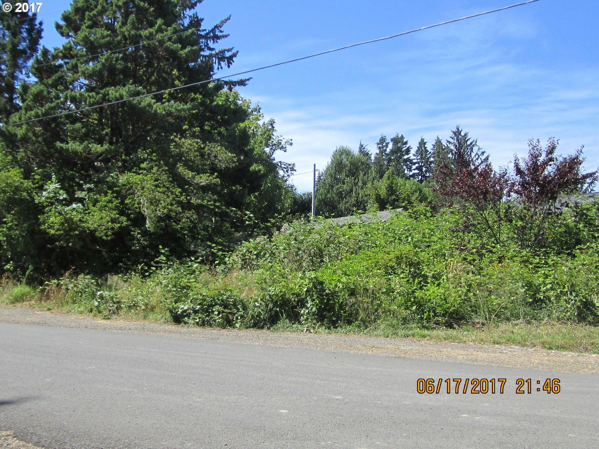 12895 A St, Nehalem, OR - USA (photo 3)