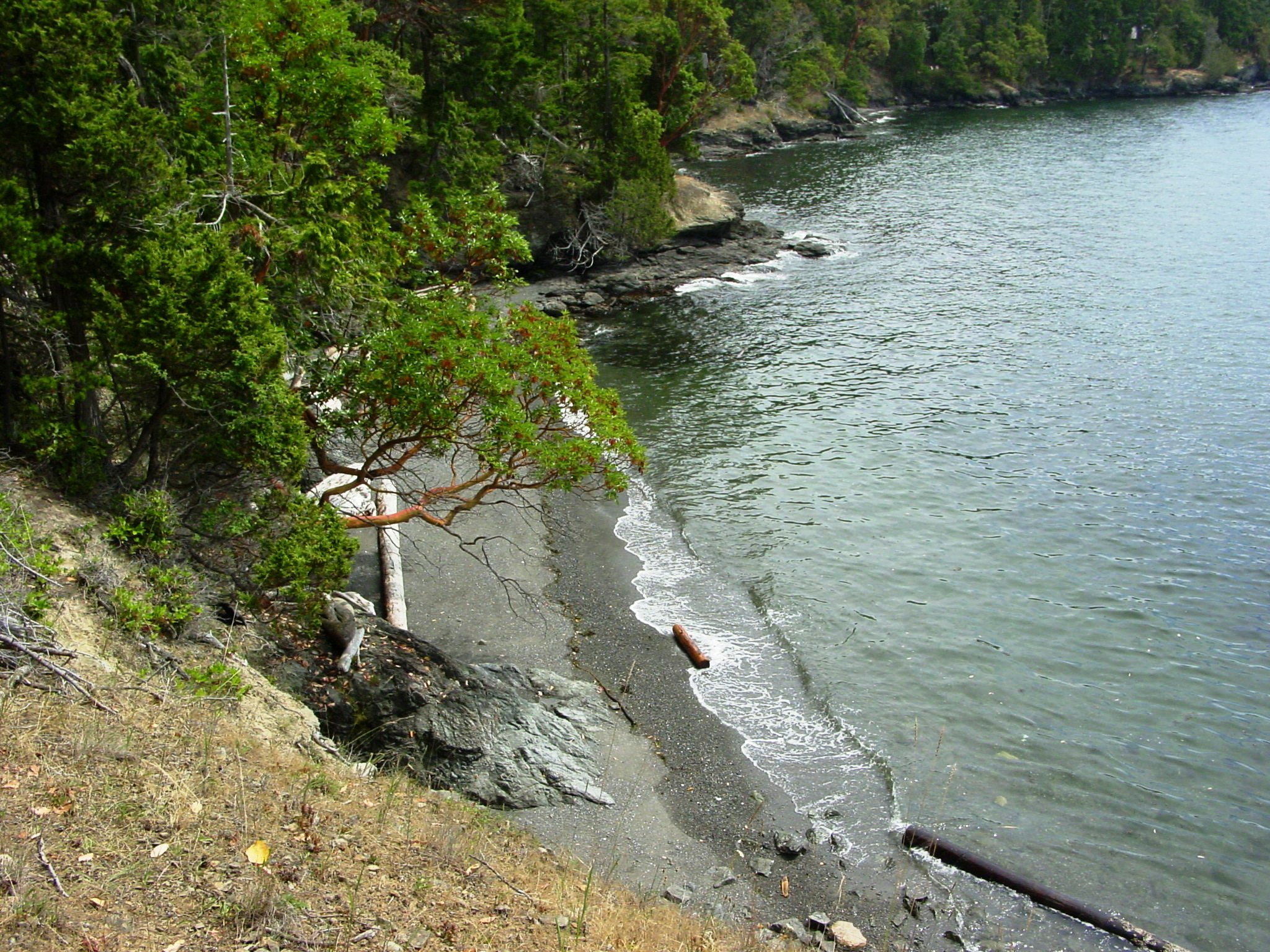 0 Foster Point Rd, Orcas Island, WA - USA (photo 1)