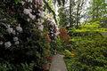 Front entry, patio & garden